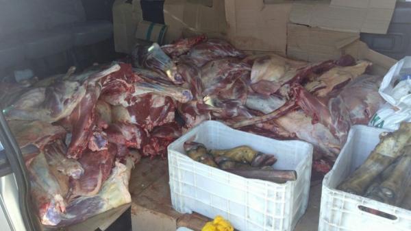 1,5 tonelada de carne adulterada é apreendida na Bahia; produtos eram transportados para Salvador